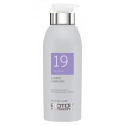 Šampūnas šviesiems plaukams BIOTOP Professional 19 Pro Silver Shampoo BIO83522, neutralizuoja geltoną atspalvį, 500 ml